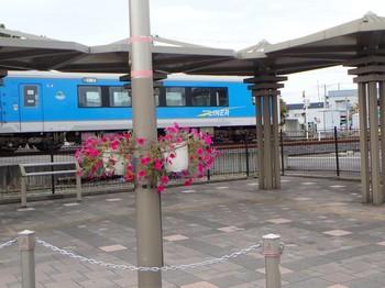 P9210041.jpg