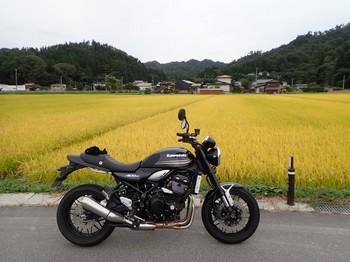 P9210063.jpg